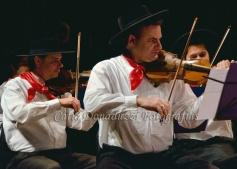 Orquestra de Câmara e Renato Borghetti_0040