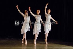 1º dia Dançando 2014 nº_0366 copy
