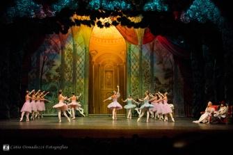 Russian State Ballet nº_0041 copy