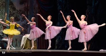 Russian State Ballet nº_0111 copy
