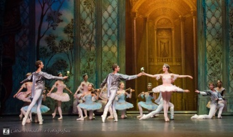 Russian State Ballet nº_0225 copy