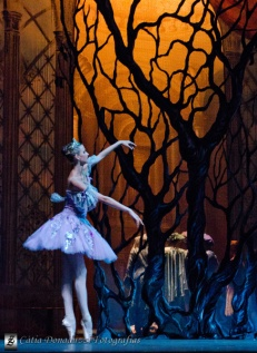 Russian State Ballet nº_0300 copy