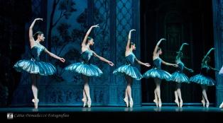 Russian State Ballet nº_0394 copy