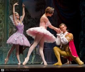 Russian State Ballet nº_0457 copy