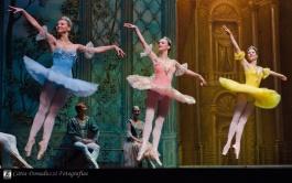 Russian State Ballet nº_0484 copy