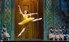 Russian State Ballet nº_0517 copy