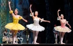 Russian State Ballet nº_0519 copy