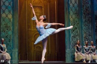 Russian State Ballet nº_0619 copy