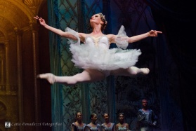 Russian State Ballet nº_0768 copy