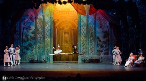 Russian State Ballet nº_0786 copy
