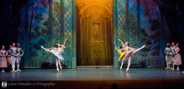 Russian State Ballet nº_0800 copy